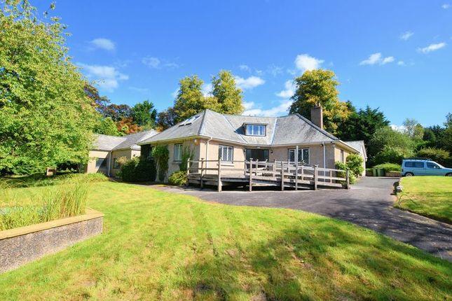 Thumbnail Detached bungalow for sale in Down Road, Tavistock