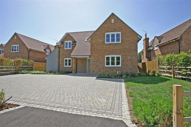 Thumbnail Detached house for sale in Fincham View, Rye Common, Odiham