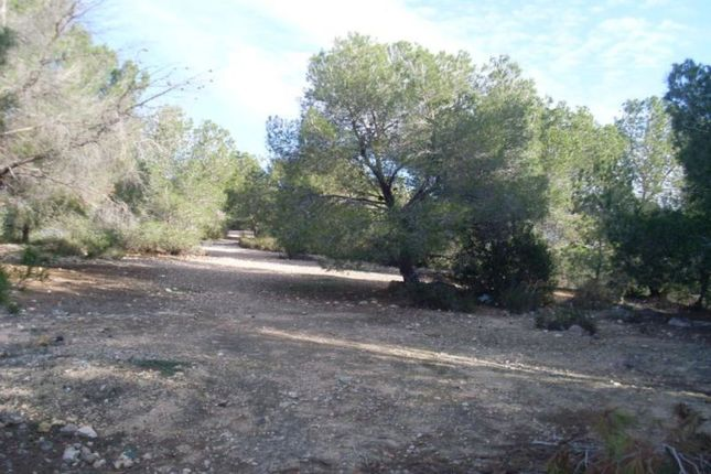 Thumbnail Land for sale in Amazing Opportunity, San Miguel De Salinas, Alicante