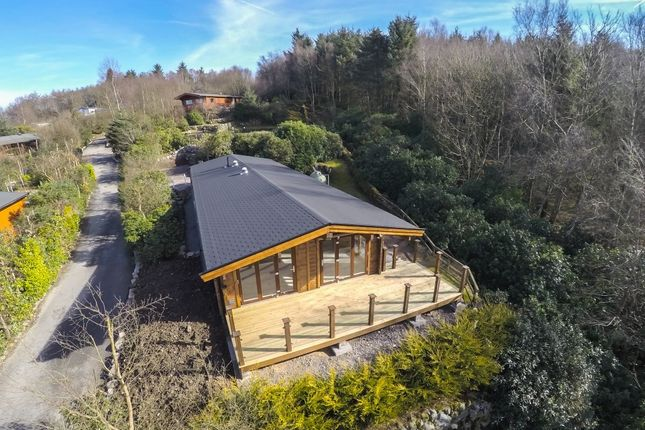 Thumbnail Lodge for sale in Lodge 6, Alpine Meadow, Kippford Dalbeattie