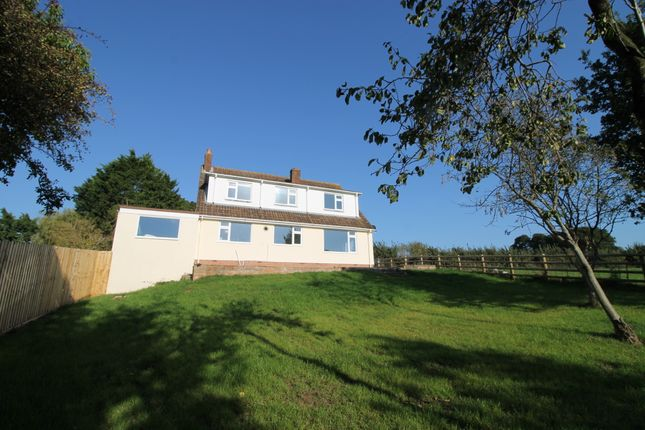 Thumbnail Detached house to rent in Winslade Park Avenue, Clyst St. Mary, Exeter
