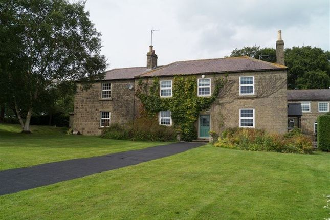 Thumbnail Detached house to rent in Dukes Place, Bishop Thornton, Harrogate