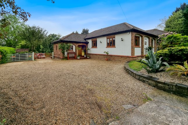 Thumbnail Detached bungalow for sale in Goldsmiths, South Hill, Langdon Hills, Basildon
