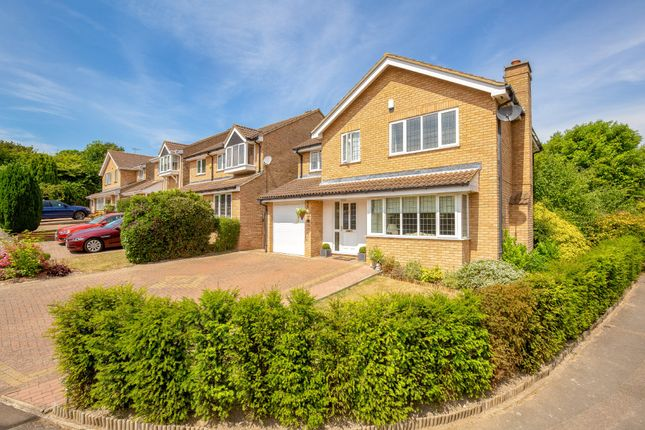 Thumbnail Detached house for sale in Furze Grove, Royston