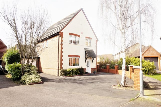 Thumbnail Detached house for sale in Alder Close, Steeple View, Basildon