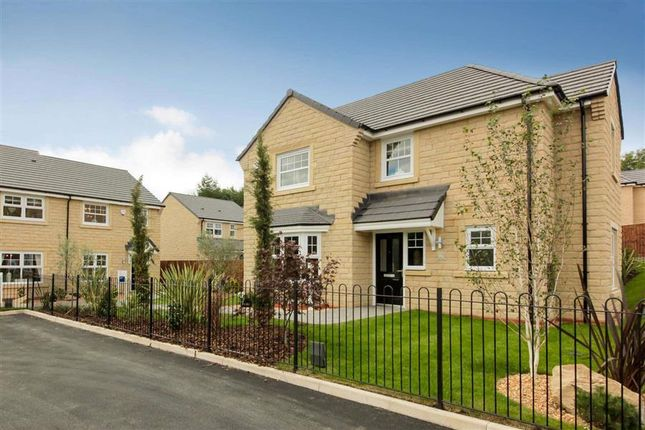 Thumbnail Detached house for sale in Ward Way, Rossendale