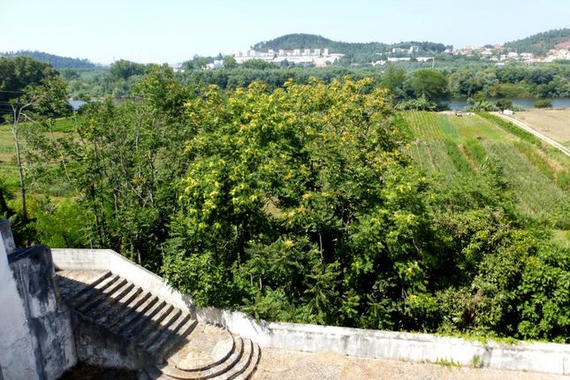 Thumbnail Farm for sale in P510, Farm With A Monastery In Coimbra, Portugal