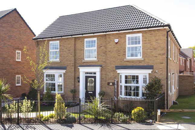 "Thumbnail Detached house for sale in ""Eden"" at Fen Street, Wavendon, Milton Keynes"