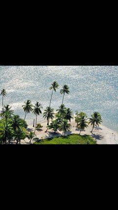Brazil Land For Sale Buy Land In Brazil Primelocation