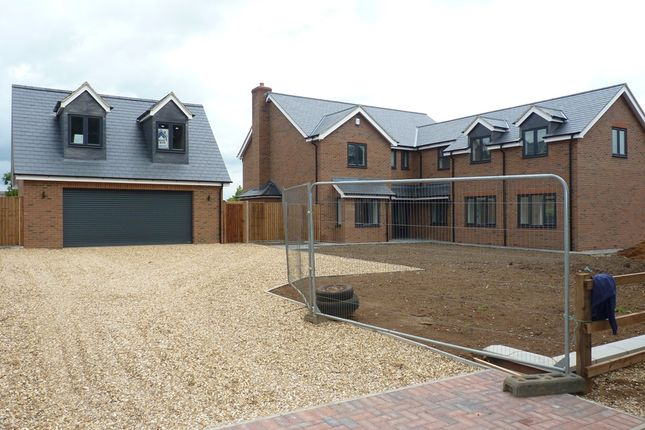 Thumbnail Detached house for sale in Little Heath, Gamlingay