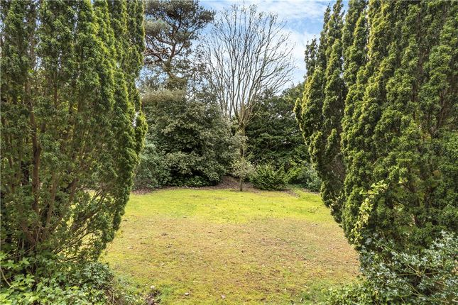 Grounds of Dean Park Road, Bournemouth BH1