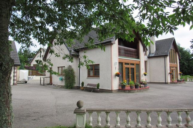 Thumbnail Semi-detached house for sale in Daviot, Inverness