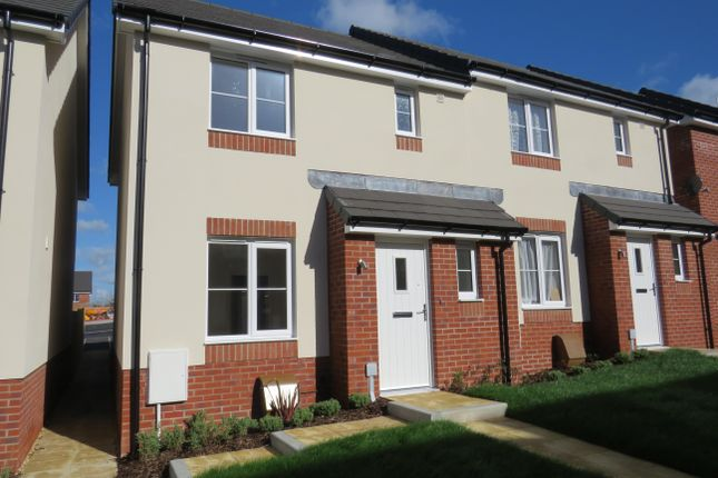 3 bed semi-detached house to rent in Wagtail Walk, Axminster EX13