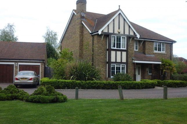Thumbnail Detached house for sale in Harlequin Close, Herne Bay, Kent