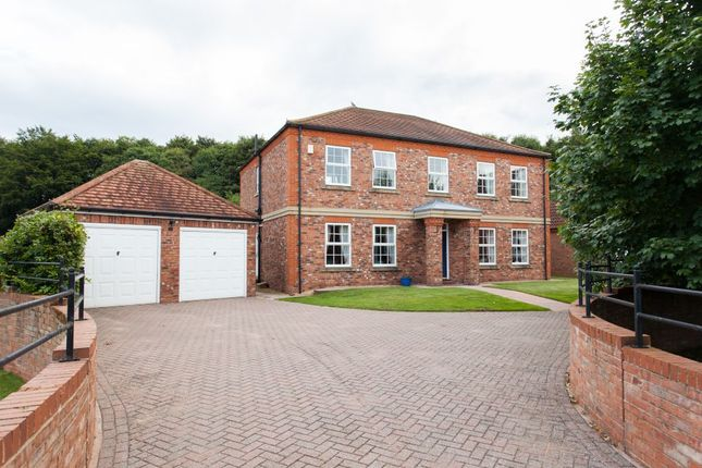 Thumbnail Detached house for sale in Barns Wray, Easingwold, York