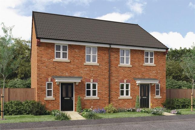 """Thumbnail Mews house for sale in """"Wilde"""" at Croston Road, Farington Moss, Leyland"""