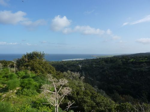 Land for sale in Yenierenkoy, Famagusta, Cyprus
