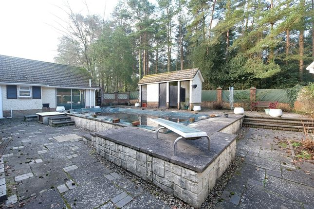 Swimming Pool of Hill Top, Beaulieu SO42