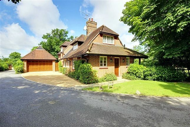 Thumbnail Detached house to rent in Totteridge Common, London
