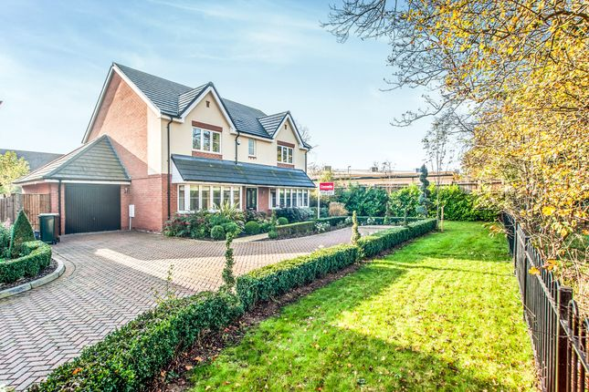 Thumbnail Detached house for sale in South Way, Abbots Langley