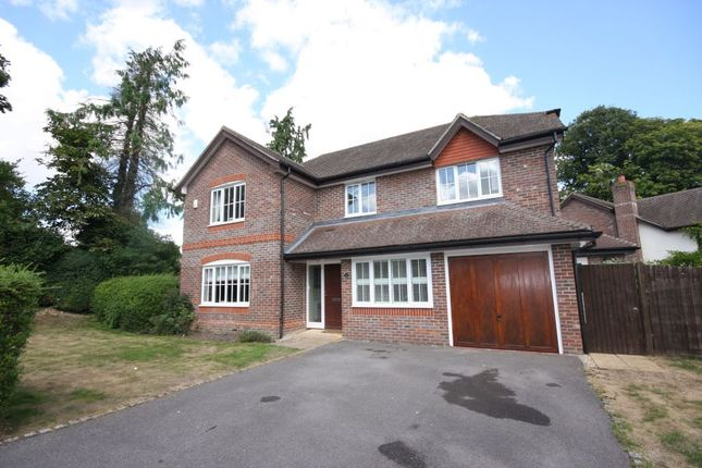 Thumbnail Detached house to rent in The Hall Way, Littleton, Winchester