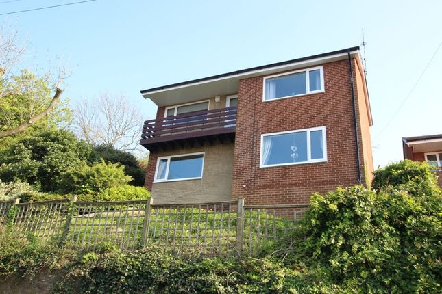 Thumbnail Detached house for sale in Busty Bank, Burnopfield, Newcastle Upon Tyne