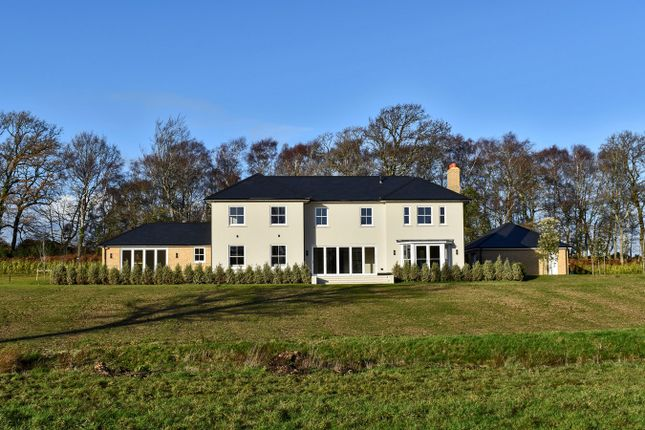 Thumbnail Detached house for sale in Main Road, Portmore, Lymington