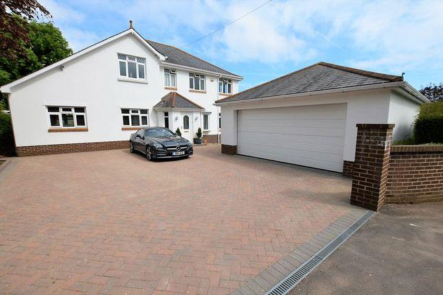 Thumbnail Property for sale in Langdon Lane, Galmpton, Brixham