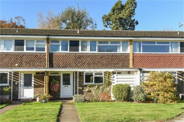 Thumbnail Terraced house to rent in Shornefield Close, Bromley, Kent