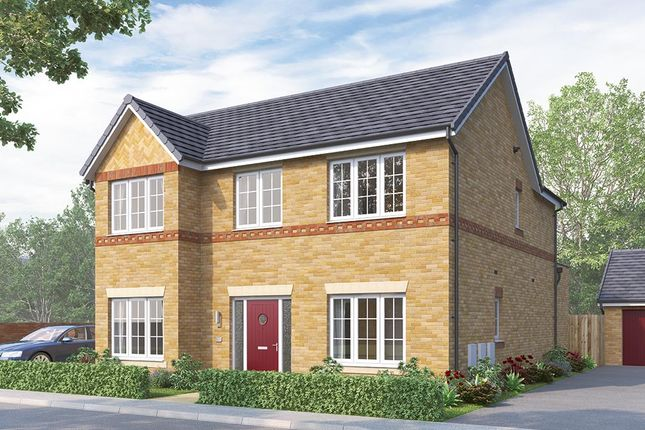 """Thumbnail Detached house for sale in """"The Tetbury"""" at Greaves Lane, Stannington, Sheffield"""