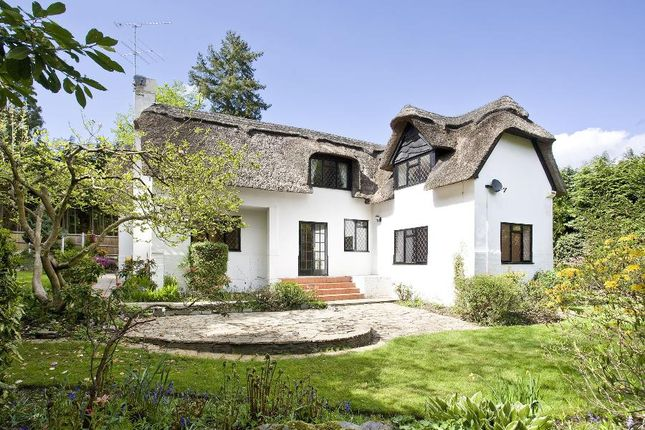 Thumbnail Cottage to rent in Fireball Hill, Ascot