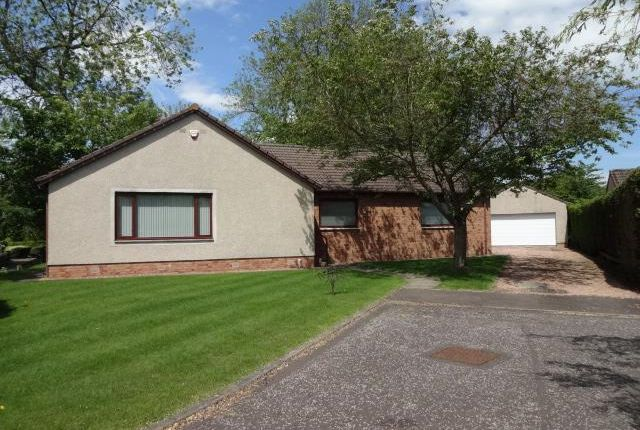 Thumbnail Detached house to rent in Boniface Place, Invergowrie, Dundee