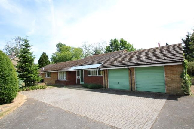 Thumbnail Detached bungalow for sale in Paddock Street, Soham, Ely