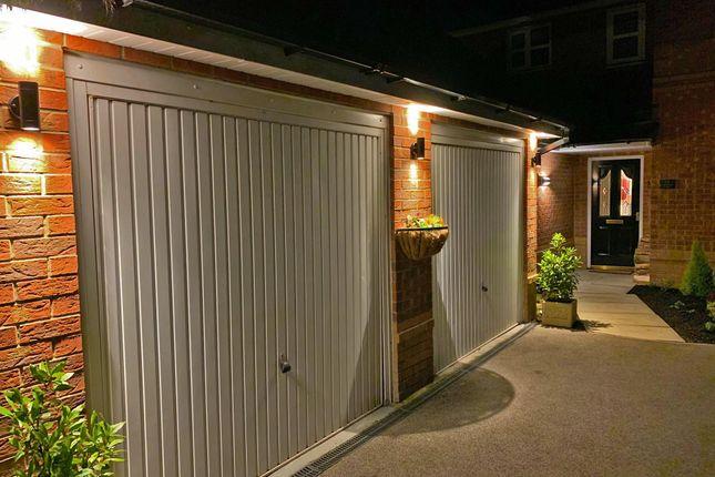 Evening Front Door