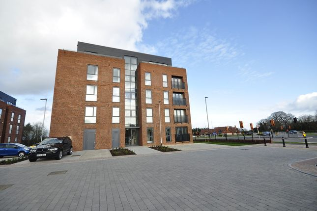 Thumbnail Flat to rent in Somerset Close, Derby
