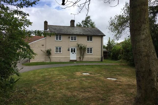 Thumbnail Detached house to rent in Mill Lane, Marlesford, Woodbridge