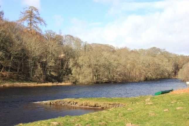 Picture No. 05 of Week 12 Lower Beauly Fishings, Lower Beauly, Beauly IV4