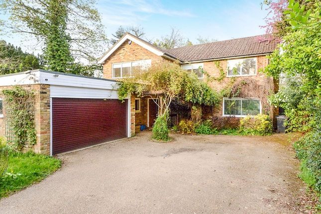 Thumbnail Detached house to rent in Newlands Avenue, Radlett