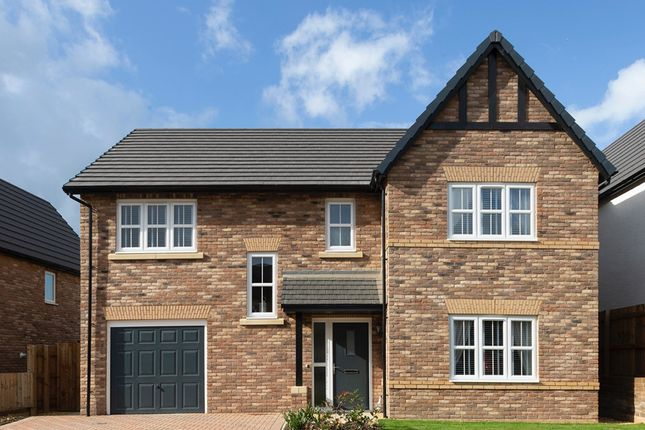 """Thumbnail Detached house for sale in """"Lawson"""" at Heron Drive, Fulwood, Preston"""