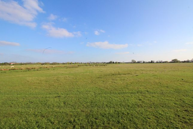 Thumbnail Land for sale in Winchelsea, Near Rye