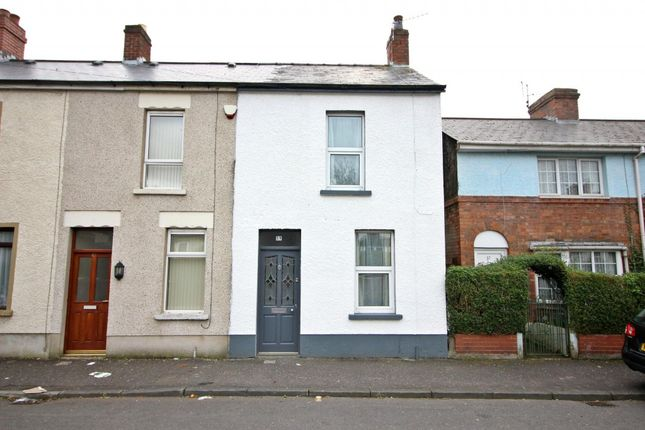 Thumbnail Terraced house to rent in Henderson Avenue, Cavehill, Belfast
