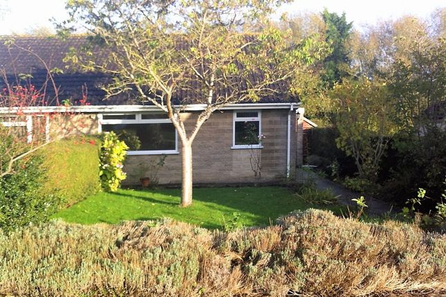 Thumbnail Bungalow to rent in Brookland Road, Langport