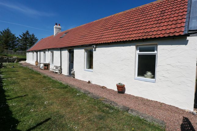 Thumbnail Cottage for sale in West Flemington Farm Cottage, Burnmouth, Eyemouth