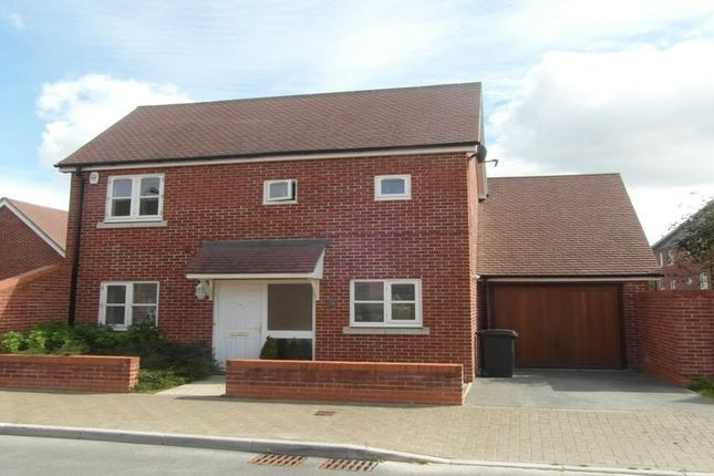2 bed detached house to rent in Basswood Drive, Basingstoke RG24