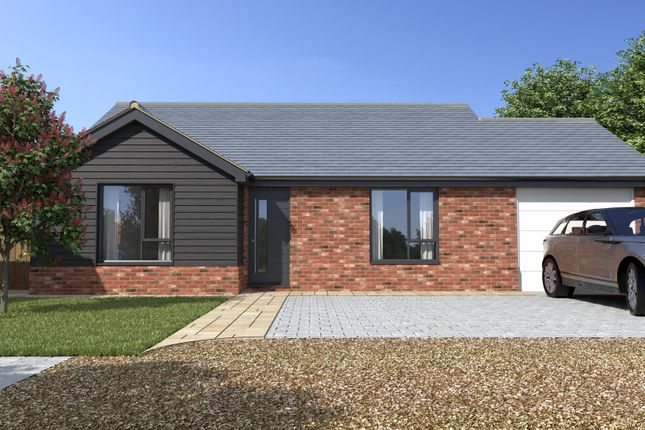 Thumbnail Detached bungalow for sale in Beech Terrace, Stowmarket