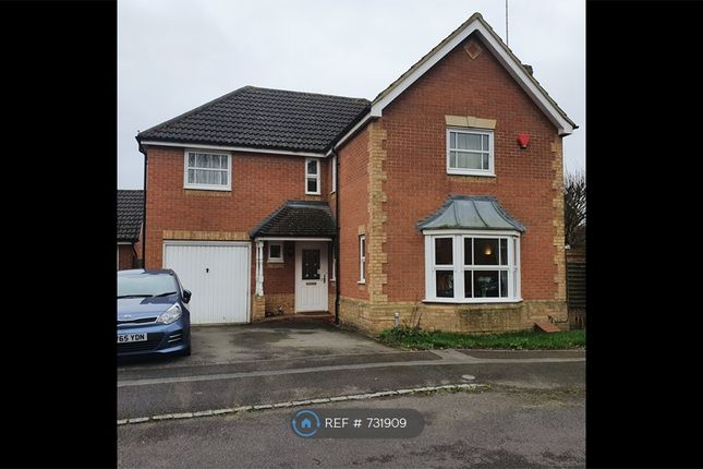 Thumbnail Detached house to rent in Primrose Park, Arborfield