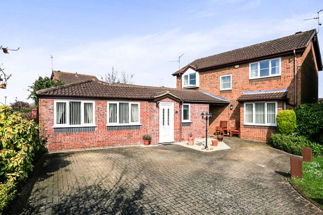 Thumbnail Detached house for sale in Barbers Hill, Werrington, Peterborough