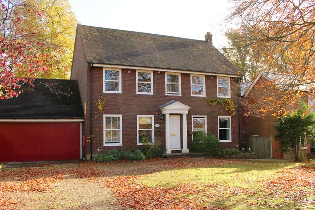 Thumbnail Detached house to rent in Shepherds Down, Alresford