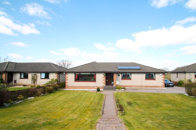 Thumbnail Detached bungalow for sale in Allandale Crescent, Greenloaning, Dunblane