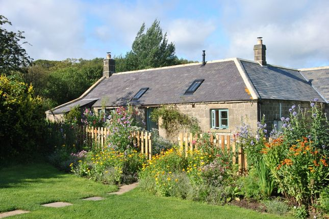 Thumbnail Cottage for sale in Shielhope Cottage, Alnwick, Northumberland